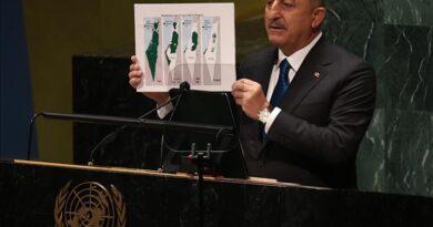 Turki dukung perjuangan Palestina di forum-forum internasional