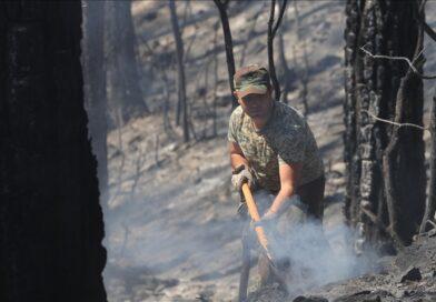 Hungaria menyampaikan belasungkawa pada korban kebakaran hutan di Turki
